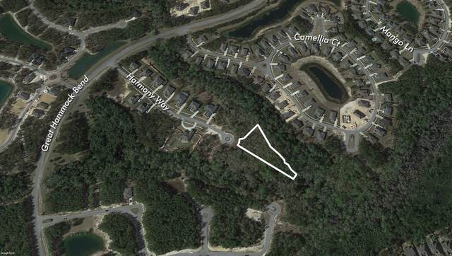 LOT 10 Harmony Way, Freeport, FL 32439 (MLS #849259) :: Engel & Voelkers - 30A Beaches