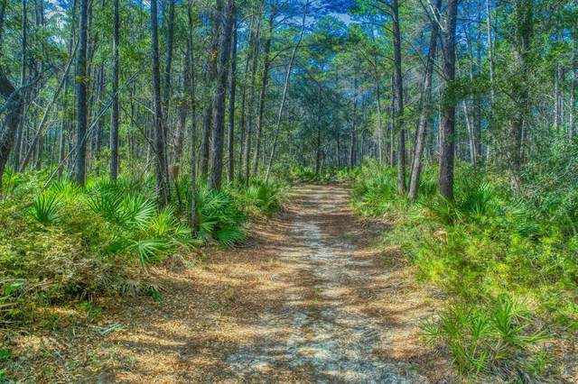 461 Don Bishop Road, Santa Rosa Beach, FL 32459 (MLS #862712) :: Vacasa Real Estate