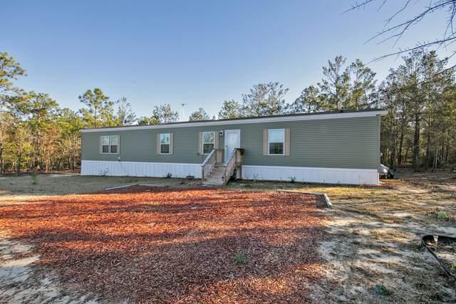 284 E Iris East Lane, Defuniak Springs, FL 32433 (MLS #863184) :: Berkshire Hathaway HomeServices PenFed Realty