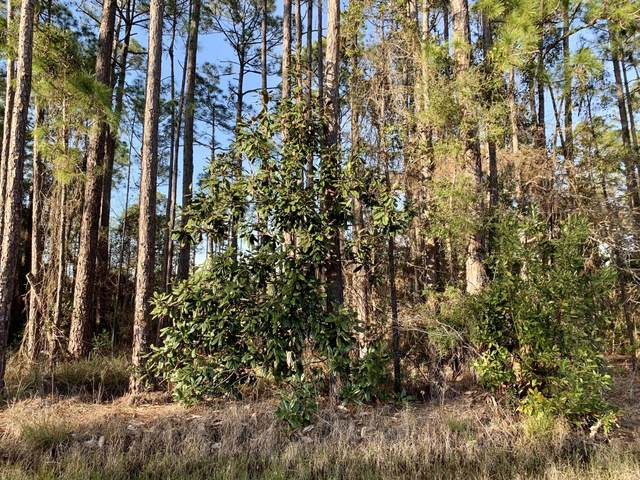 Lot 15 Nikki Circle, Santa Rosa Beach, FL 32459 (MLS #863210) :: Linda Miller Real Estate