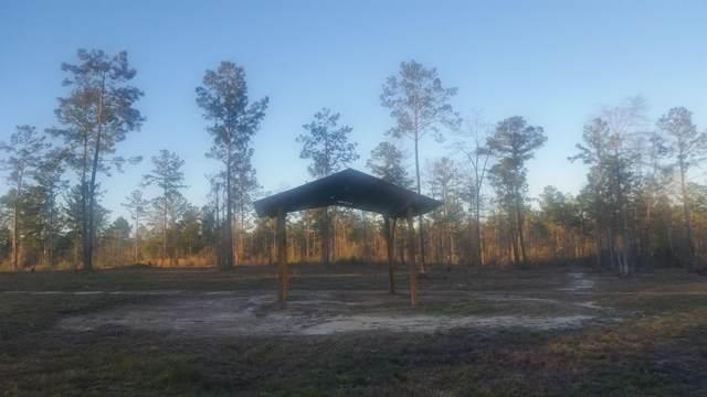 30 acres Crooked Creek Road, Ponce De Leon, FL 32455 (MLS #865253) :: Vacasa Real Estate