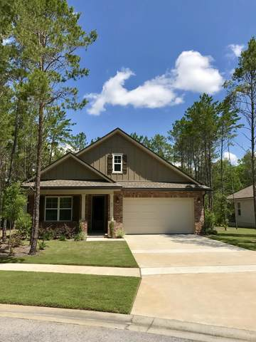 25 Leap Year Lane, Freeport, FL 32439 (MLS #869811) :: Keller Williams Realty Emerald Coast