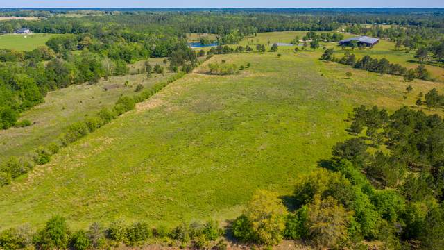 60 acres Long Road, Laurel Hill, FL 32567 (MLS #870020) :: Counts Real Estate Group