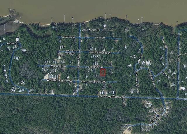 TBD E Georgie East Street, Santa Rosa Beach, FL 32459 (MLS #872431) :: Berkshire Hathaway HomeServices Beach Properties of Florida