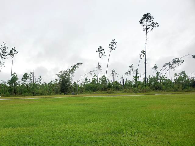 LOT 181 Widewater Circle, Wewahitchka, FL 32465 (MLS #882027) :: Counts Real Estate Group