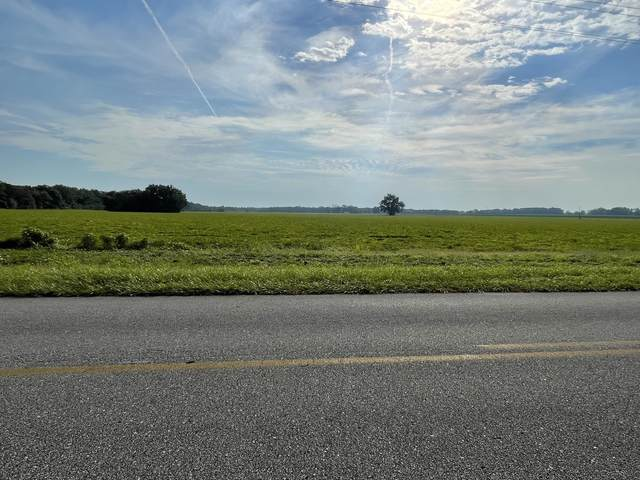 17+/- AC Beaver Creek Road Parcel A, Baker, FL 32531 (MLS #883027) :: Scenic Sotheby's International Realty