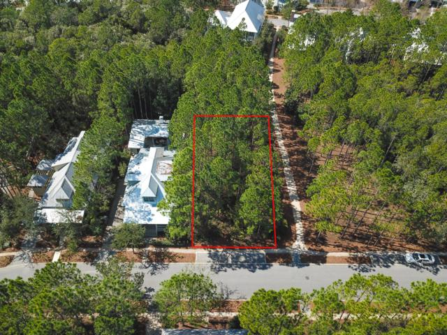 616 E Royal Fern Way, Santa Rosa Beach, FL 32459 (MLS #703569) :: 30a Beach Homes For Sale