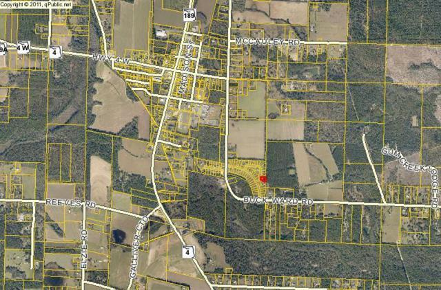 Lot 14C Price Plantation Road, Baker, FL 32531 (MLS #770964) :: Classic Luxury Real Estate, LLC