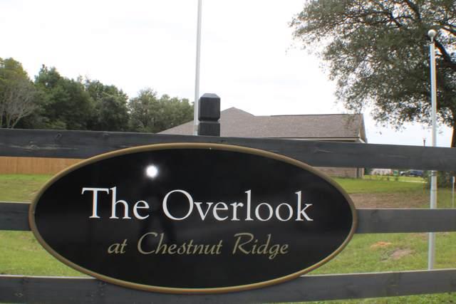 1 AC Wild Hare Lane, Crestview, FL 32539 (MLS #779312) :: Classic Luxury Real Estate, LLC