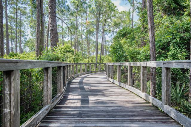 TBD Clove Hitch Lane Lot 175, Santa Rosa Beach, FL 32459 (MLS #788471) :: CENTURY 21 Coast Properties