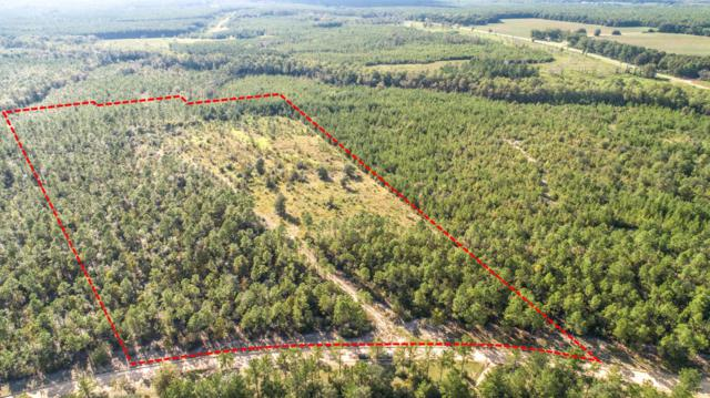 31.5 Acres Planters Dr N, Laurel Hill, FL 32567 (MLS #801576) :: ResortQuest Real Estate
