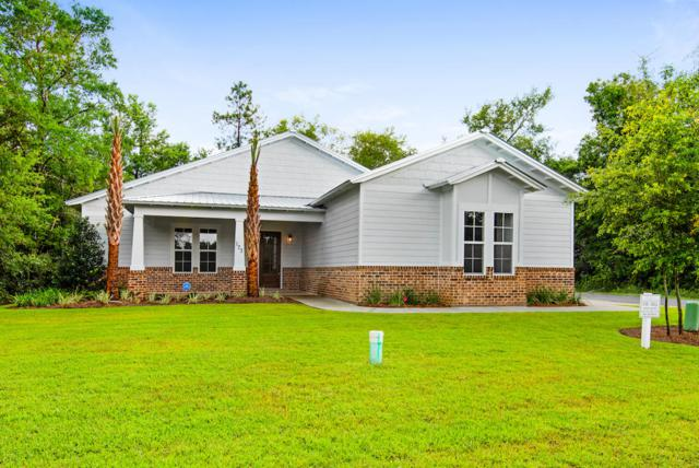 177 Sun Bear Circle, Freeport, FL 32439 (MLS #815385) :: Classic Luxury Real Estate, LLC