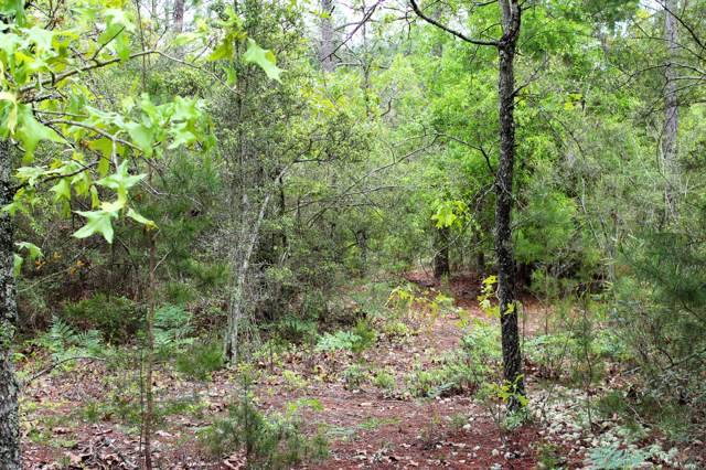 6 Acres Laird Road, Mossy Head, FL 32434 (MLS #819857) :: Briar Patch Realty