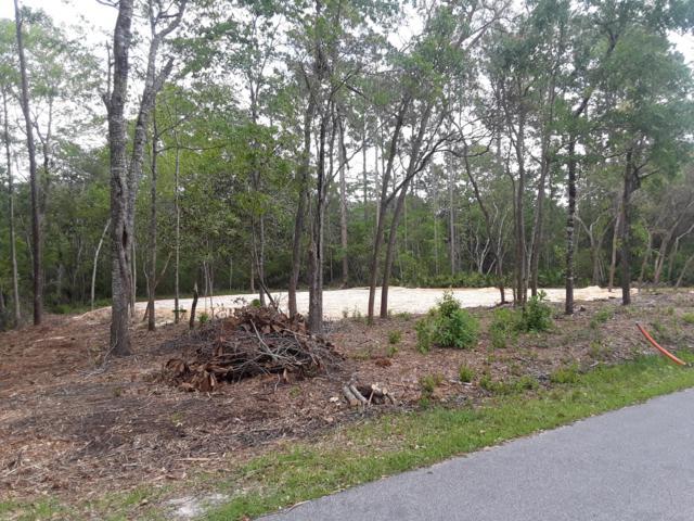 153 Bayou Circle, Freeport, FL 32439 (MLS #819992) :: Counts Real Estate Group