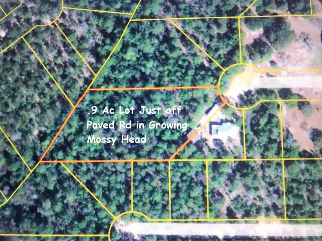 L13B97 W May Lilly Court, Defuniak Springs, FL 32433 (MLS #823935) :: Scenic Sotheby's International Realty