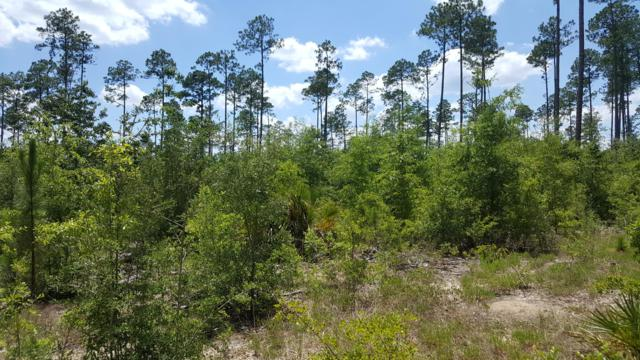 49.2 Acres Hinote Road, Mossy Head, FL 32434 (MLS #824546) :: Scenic Sotheby's International Realty