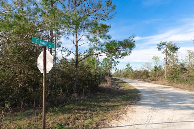 000 NW Petunia Road, Fountain, FL 32438 (MLS #838465) :: ENGEL & VÖLKERS