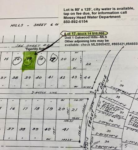 Lot 17 Tiger Lily East Lane, Defuniak Springs, FL 32433 (MLS #865420) :: Scenic Sotheby's International Realty