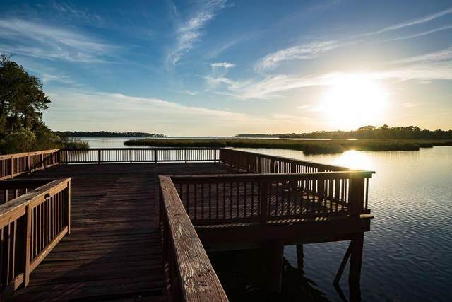 449 Waterview Cove Drive, Freeport, FL 32439 (MLS #876770) :: Scenic Sotheby's International Realty