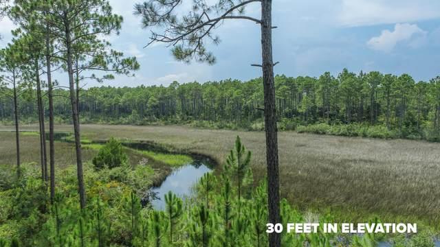 7701 Vireo Lane Lot 366, Panama City Beach, FL 32413 (MLS #876813) :: NextHome Cornerstone Realty