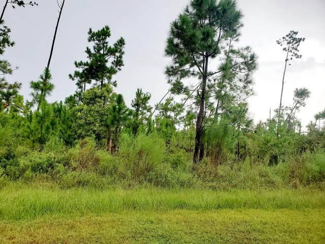 Lot 182 Widewater Circle, Wewahitchka, FL 32465 (MLS #881967) :: Counts Real Estate Group