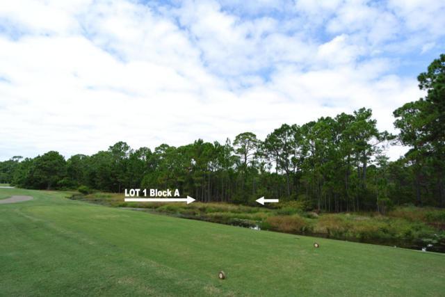 1 Bunker Place Drive, Santa Rosa Beach, FL 32459 (MLS #715321) :: ResortQuest Real Estate