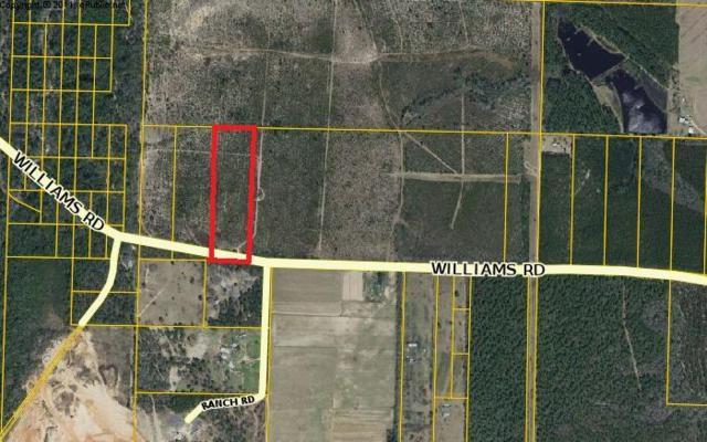 10 ac Williams, Defuniak Springs, FL 32433 (MLS #729753) :: Counts Real Estate Group
