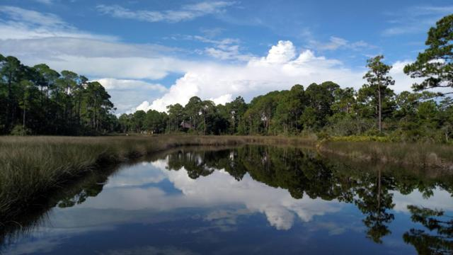 LOT 4 Arboleda Drive, Santa Rosa Beach, FL 32459 (MLS #756334) :: Scenic Sotheby's International Realty