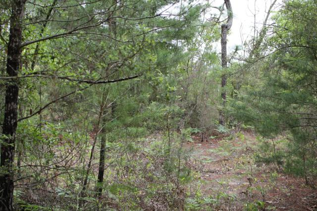 00 Laird Road, Crestview, FL 32539 (MLS #805731) :: Levin Rinke Realty
