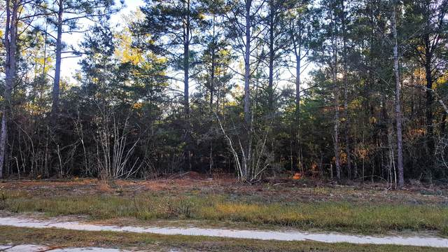 6 Acres Laird Road, Mossy Head, FL 32434 (MLS #819857) :: ENGEL & VÖLKERS