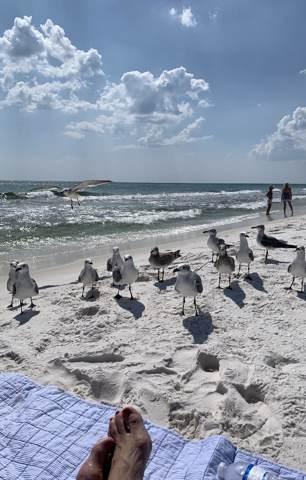 11 Beachside Drive Drive #721, Santa Rosa Beach, FL 32459 (MLS #829270) :: Linda Miller Real Estate