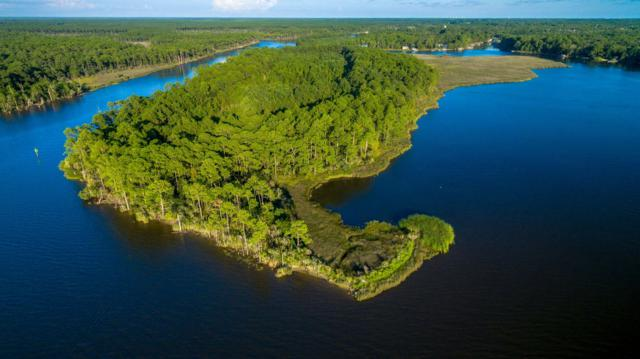 000 Private Island On Tucker Bayou, Santa Rosa Beach, FL 32459 (MLS #778115) :: Classic Luxury Real Estate, LLC