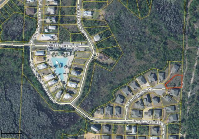 113 Pearl Aardon Cv, Santa Rosa Beach, FL 32459 (MLS #790933) :: Scenic Sotheby's International Realty