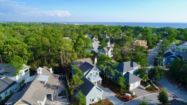 18 Harvest Moon Lane, Santa Rosa Beach, FL 32459 (MLS #769472) :: 30a Beach Homes For Sale