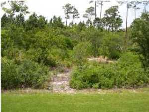 3584 Preserve Lane - Photo 1