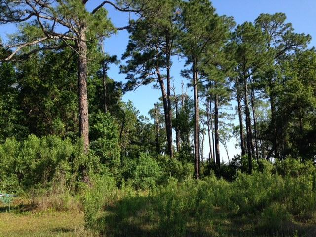 Lot 15 Silverleaf Lane, Point Washington, FL 32459 (MLS #756328) :: The Premier Property Group