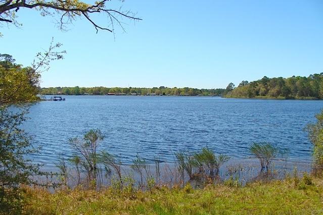 3.28Ac. Holley King Road, Defuniak Springs, FL 32433 (MLS #766629) :: CENTURY 21 Coast Properties