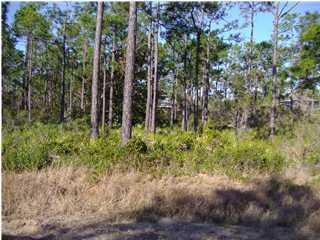 Lot 18 Dolphin Ct, Santa Rosa Beach, FL 32459 (MLS #770156) :: Berkshire Hathaway HomeServices Beach Properties of Florida