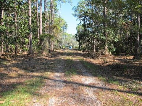 Lot 36 J D Miller Road, Santa Rosa Beach, FL 32459 (MLS #775967) :: Back Stage Realty