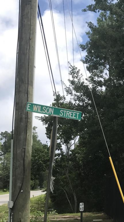 000 Wilson Street, Santa Rosa Beach, FL 32459 (MLS #778213) :: RE/MAX By The Sea