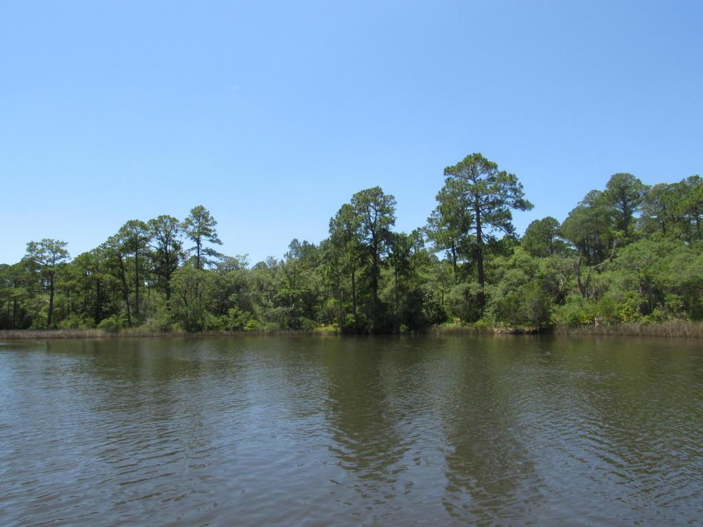3.70 Acres Churchill Bayou - Photo 1