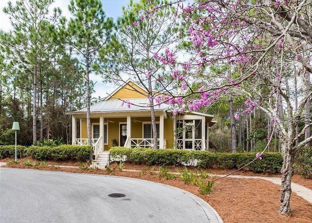 66 Tall Timber Court, Santa Rosa Beach, FL 32459 (MLS #791705) :: Coast Properties