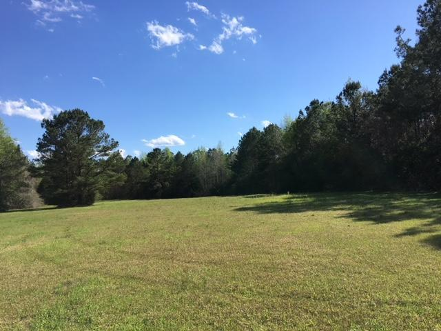 10 Acres Charles Rushing Rd., Ponce De Leon, FL 32455 (MLS #794381) :: Luxury Properties on 30A