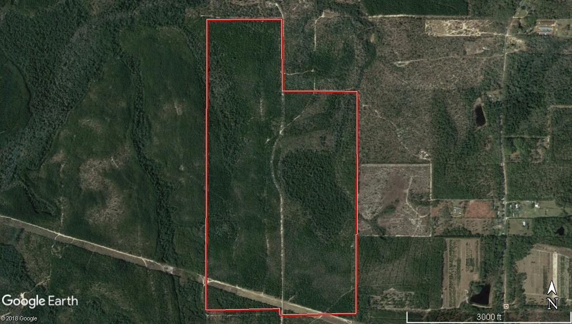 296 Acres Norwood Rd. - Photo 1