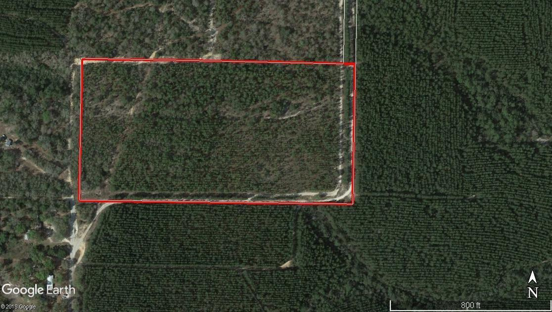 20 Acres Norwood Rd. - Photo 1