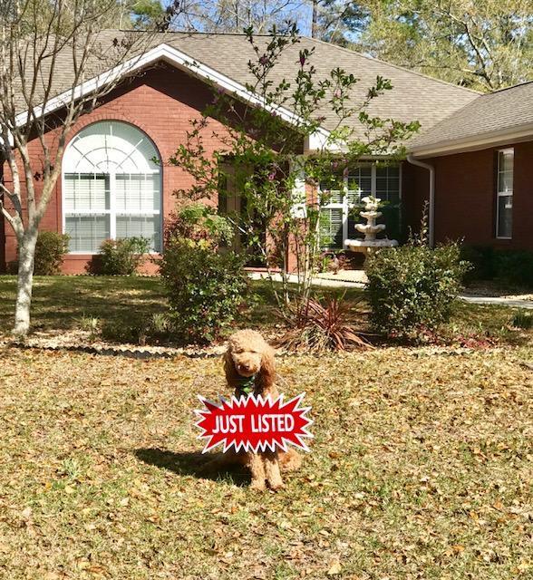 10812 Cedar Ridge Lane, Southport, FL 32409 (MLS #794708) :: Keller Williams Realty Emerald Coast