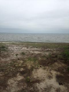 Lot 33 Driftwood Point Road, Santa Rosa Beach, FL 32459 (MLS #796004) :: ResortQuest Real Estate