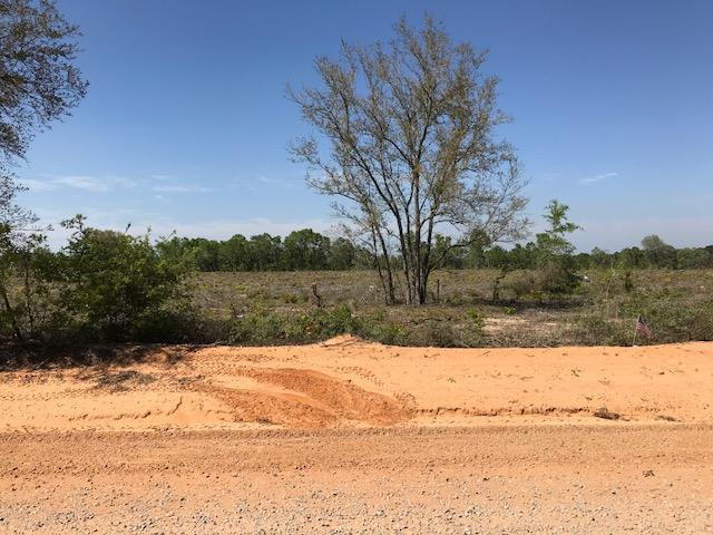 0000 Mud Hill Road Tract #3, Chipley, FL 32428 (MLS #796757) :: ResortQuest Real Estate