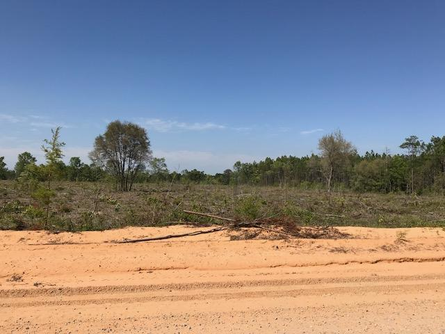 0000 Mud Hill Road Tract #4, Chipley, FL 32428 (MLS #796762) :: ResortQuest Real Estate
