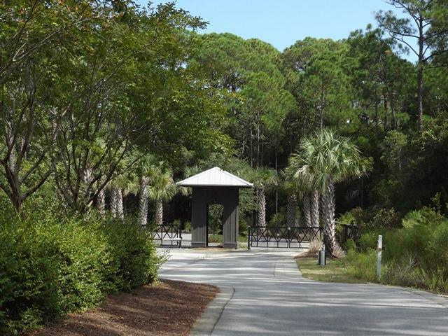 9 Redbud Lane, Inlet Beach, FL 32461 (MLS #799248) :: Scenic Sotheby's International Realty